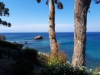 Zypern (1)