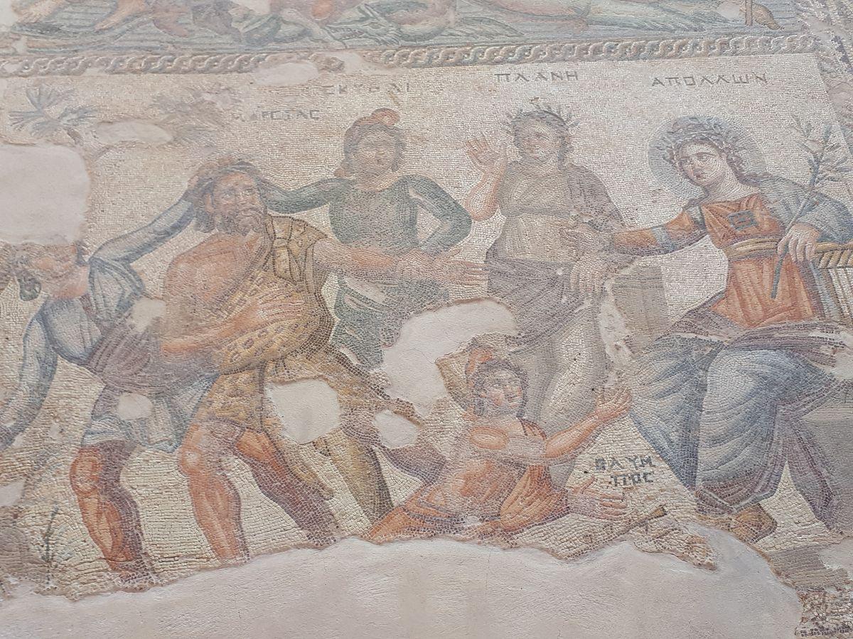 Zypern (5)