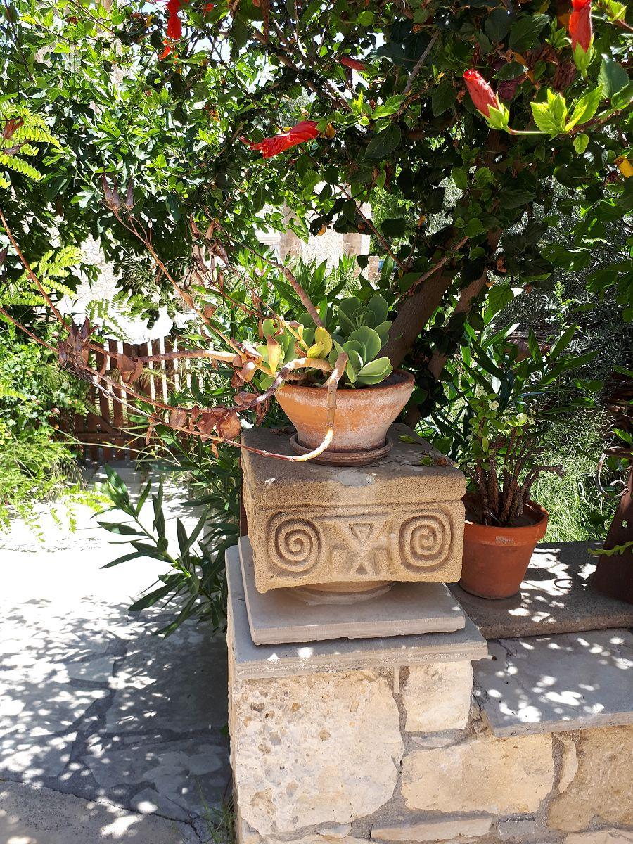 Zypern (8)
