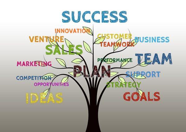 Baum_Firmencoaching