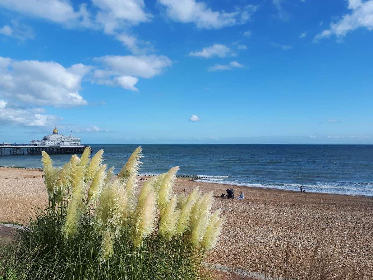 Eastbourne (4)