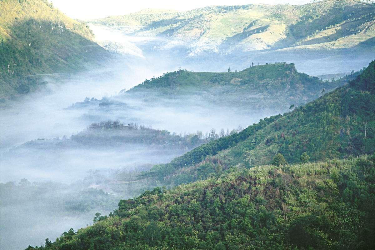 Nordthailand im Nebel b