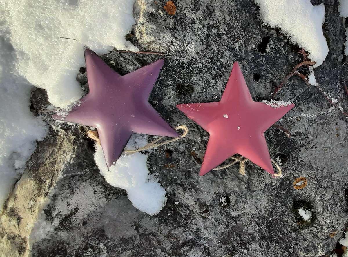 Stern im Schnee (1b)